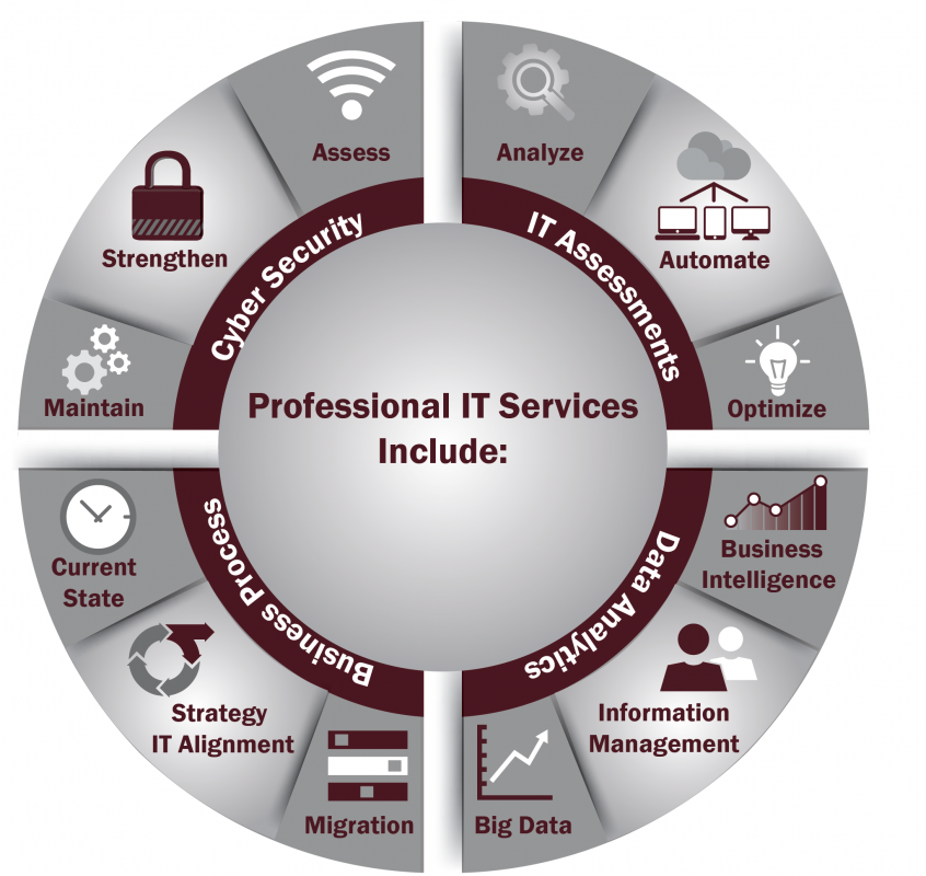 Professional IT Services include these features - Standards I.T.